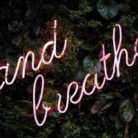 A Guide to Intentional Breathing for Anytime