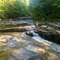 Connecting with the Healing Power of Nature